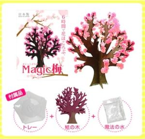 【Magic桜】実際に購入して試してみた口コミ感想